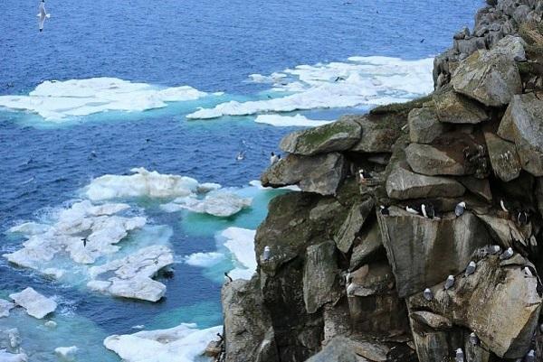 Сколько морей омывает Россию, какие, берега на карте, фото, названия и описание