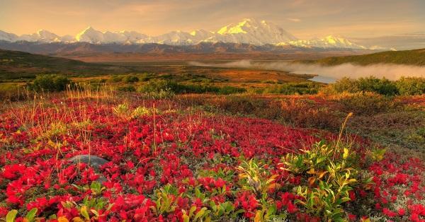 Западно-Сибирская равнина. Фото, где находится, высоты, возраст, города, климат, природные зоны