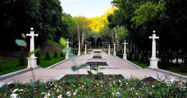 Воронеж красивый город