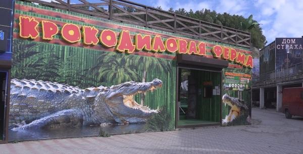 Отдых в Ольгинке. Фото поселка и пляжа, карта, достопримечательности, развлечения
