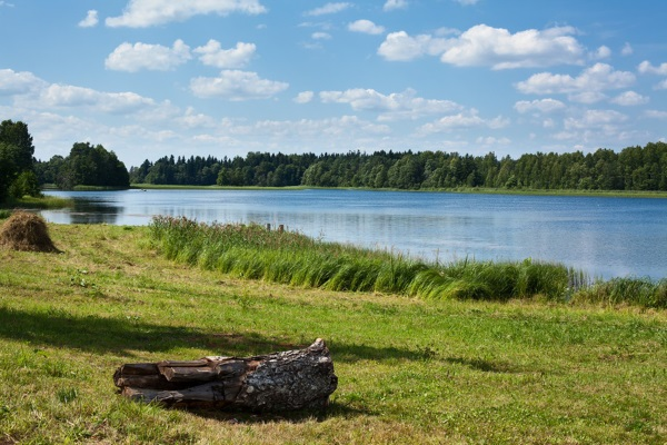 Заповедники и национальные парки России. Список, названия, фото, где находятся