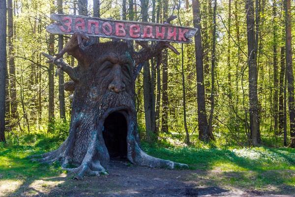 Самые интересные места в России для путешествия с ребенком, на машине, фото с описанием