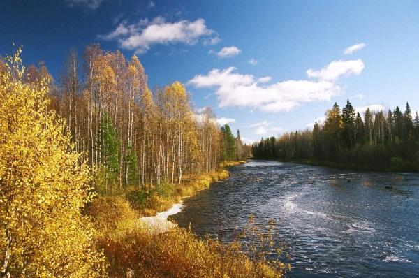 Экскурсии из Петрозаводска по Карелии, на Соловки, Валаам, Кижи, Финляндию летом. Цены и отзывы