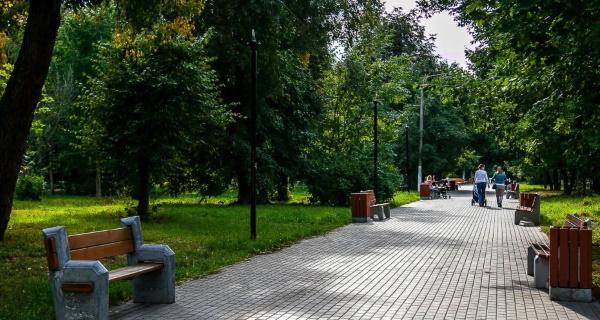 Парк Березовая роща в Новосибирске. Аттракционы, мероприятия, фото, история
