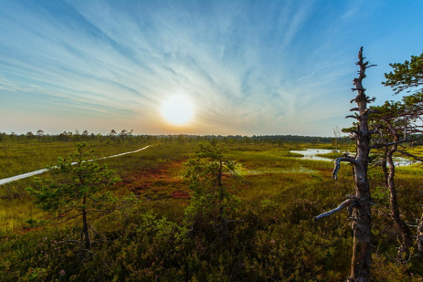 Пярну, Эстония. Достопримечательности, фото города, отдых, что посмотреть за один день