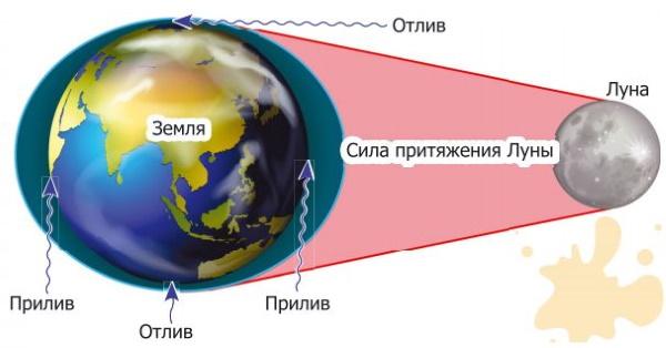 Авачинская бухта, приливы и отливы в Петропавловске-Камчатском. Карта, фото, глубина
