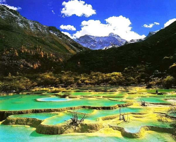Заповедник Желтый дракон, Китай. Презентация Хуанлун, фото, животные, растения, карта