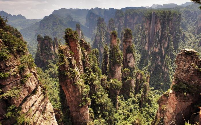 Заповедники и национальные парки мира. Список лучших: названия и страны