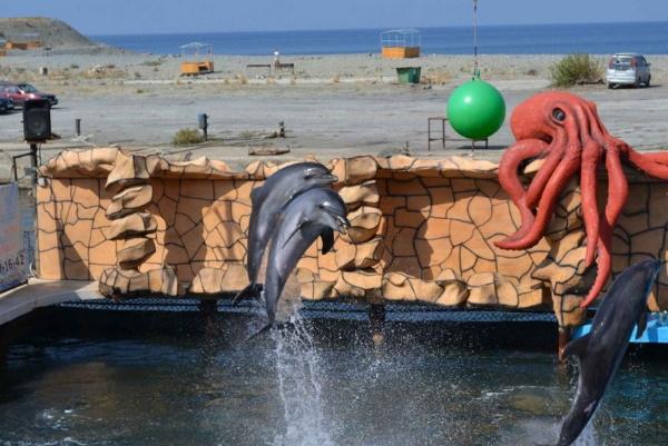 Большой Утриш, Анапа. Достопримечательности, фото, дельфинарий, заповедник, пляж, озеро, отели