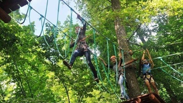 Жемчужина леса турбаза, Воронеж. Цены, фото, адрес, как доехать