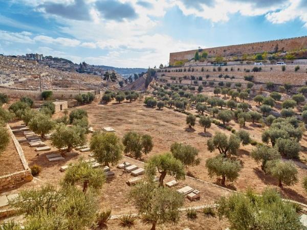 Экскурсии в Иерусалим из Тель-Авива. Цена, мини-группы на машине