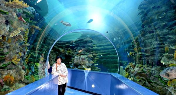 Sharjah Premiere Hotel & Resorts 3* (Премьер отель Резорт 3) ОАЭ/Шарджа. Фото, цены