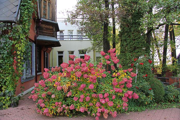 Креатово отель в Раменском. Отзывы, фото, цены