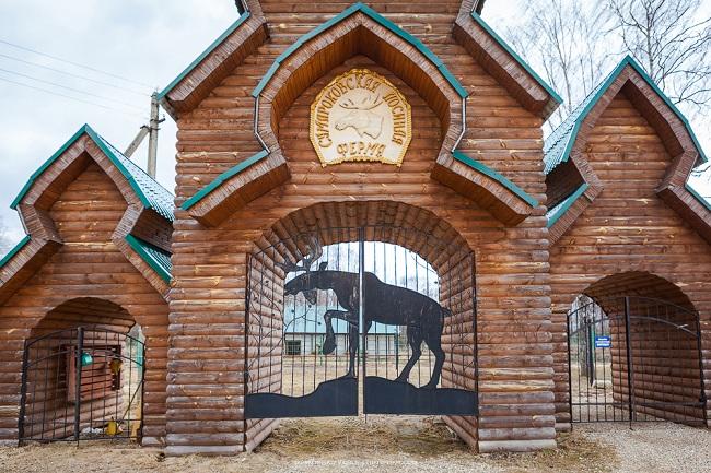 Лосиная ферма, Кострома, Сумароково. Фото, как доехать, цены