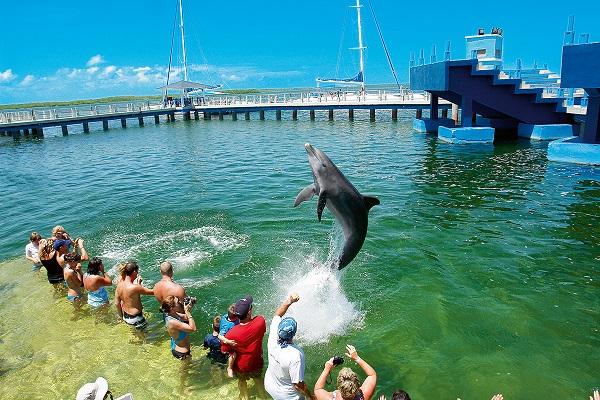 Memories Paraiso Azul Beach Resort 5* (Мемориз Параисо Азул Бич Резорт) Куба. Отзывы, фото, цены