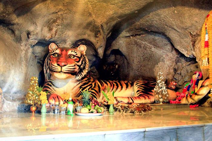 Храм тигров в Таиланде, Краби. 1200 ступенек, фото, история, туры