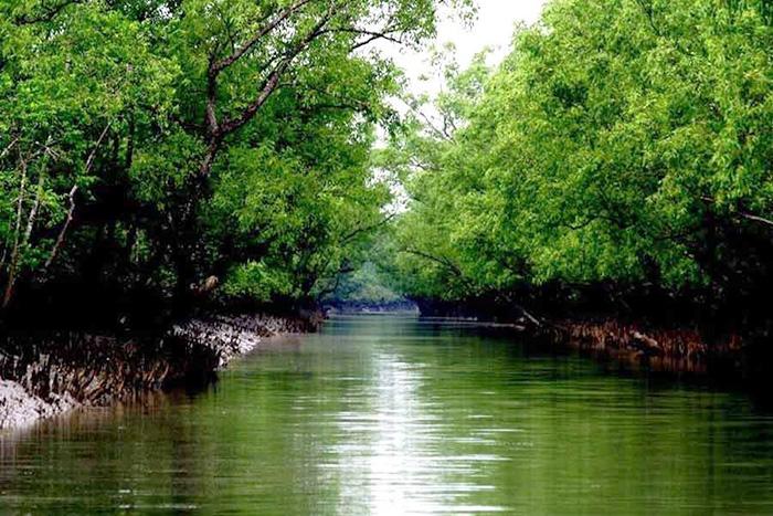 Река Ганг. Где находится самая грязная река в мире, фото, исток, устье, интересные факты, куда впадает