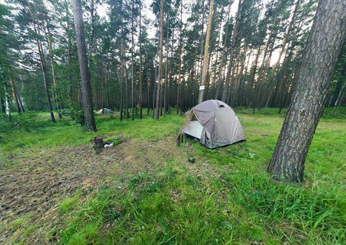 Базы отдыха Новосибирска на берегу Обского моря. Цены, отзывы