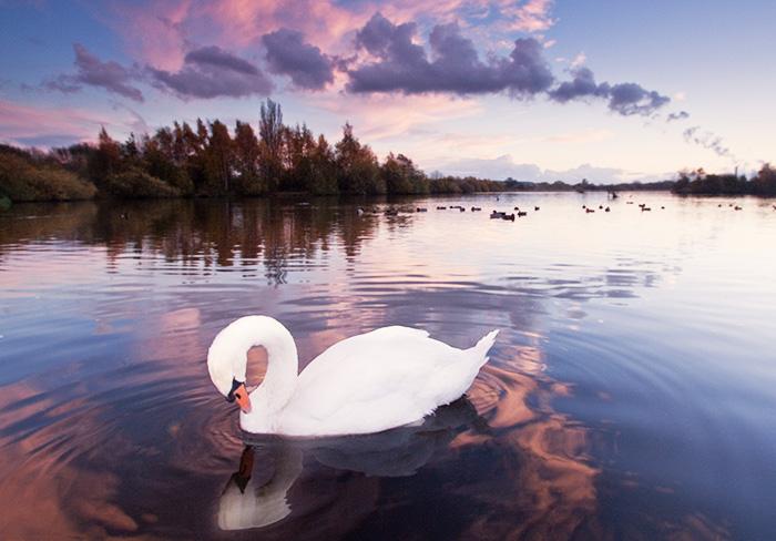 Озеро Эри. Где находится, фото, происхождение, площадь